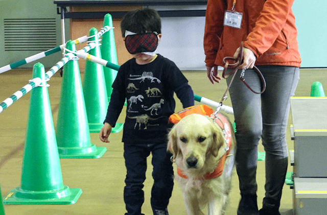 募金活動と訓練施設見学で盲導犬の育成を支援(マルエツ)