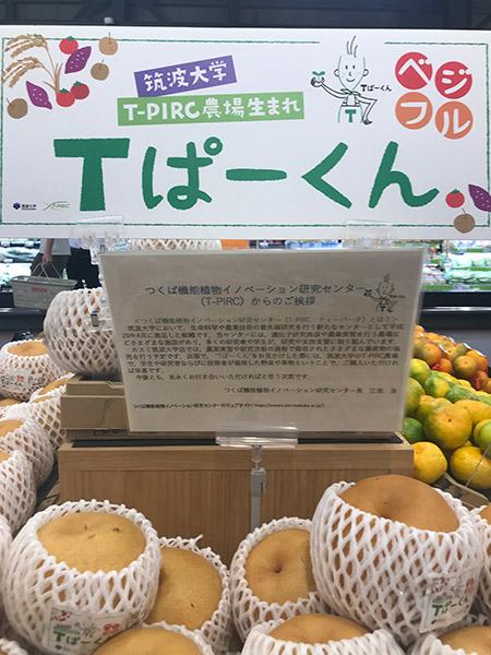 筑波大学のの作った果物なども販売